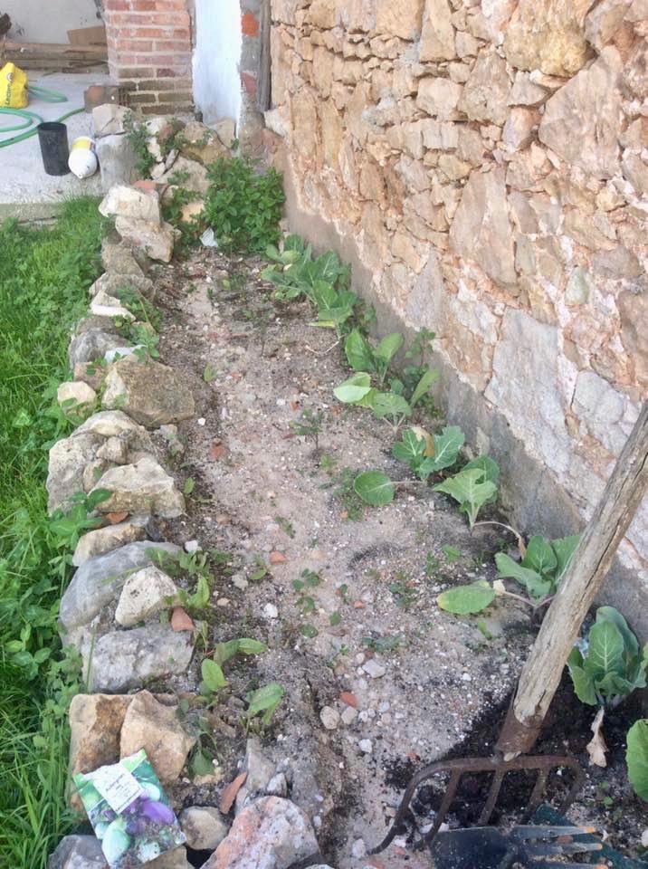 gardening-in-portugal 12