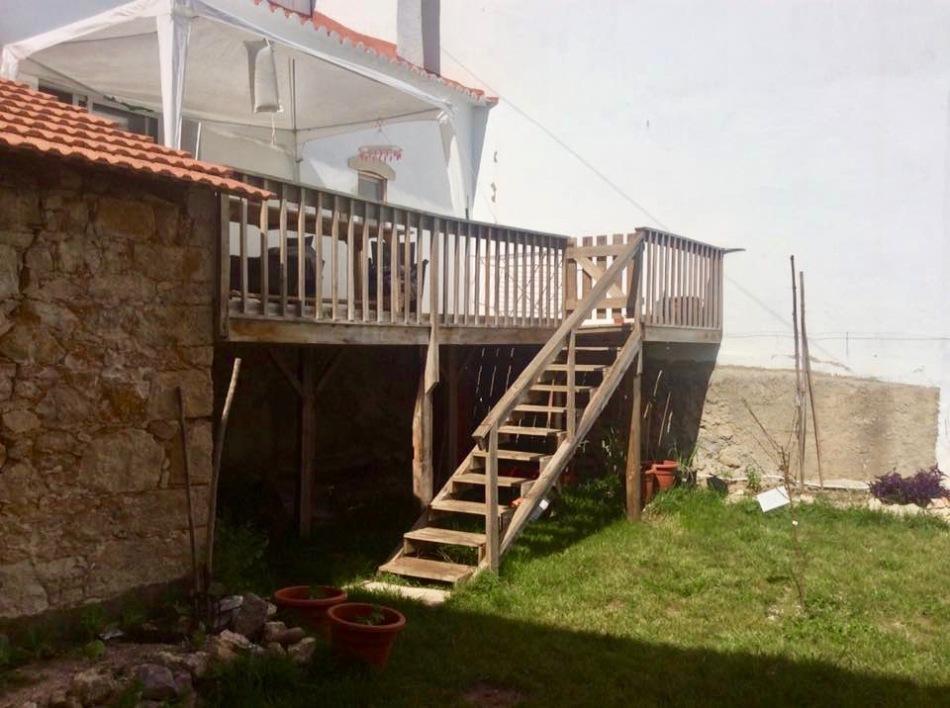 gardening-in-portugal 9